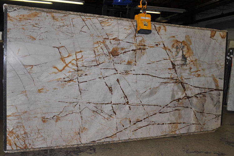 Petrified Wood Quartzite Countertops